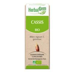 HerbalGem Cassis Bio 30 ml
