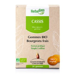 HerbalGem 24 Gommes de Cassis bourgeons frais Bio