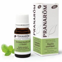 Pranarôm Huile Essentielle Bio Basilic Exotique 10 ml