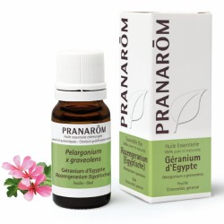 Pranarôm Huile Essentielle Géranium d'Egypte 10 ml