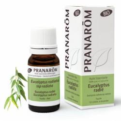 Pranarôm Huile Essentielle Bio Eucalyptus Radié 10 ml
